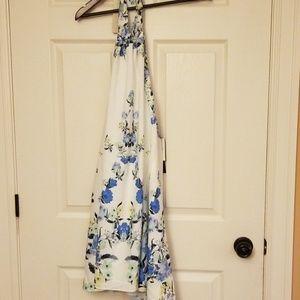 NWT Cynthia Steffe dress